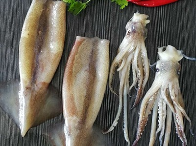 What is the nutritional value of squid?